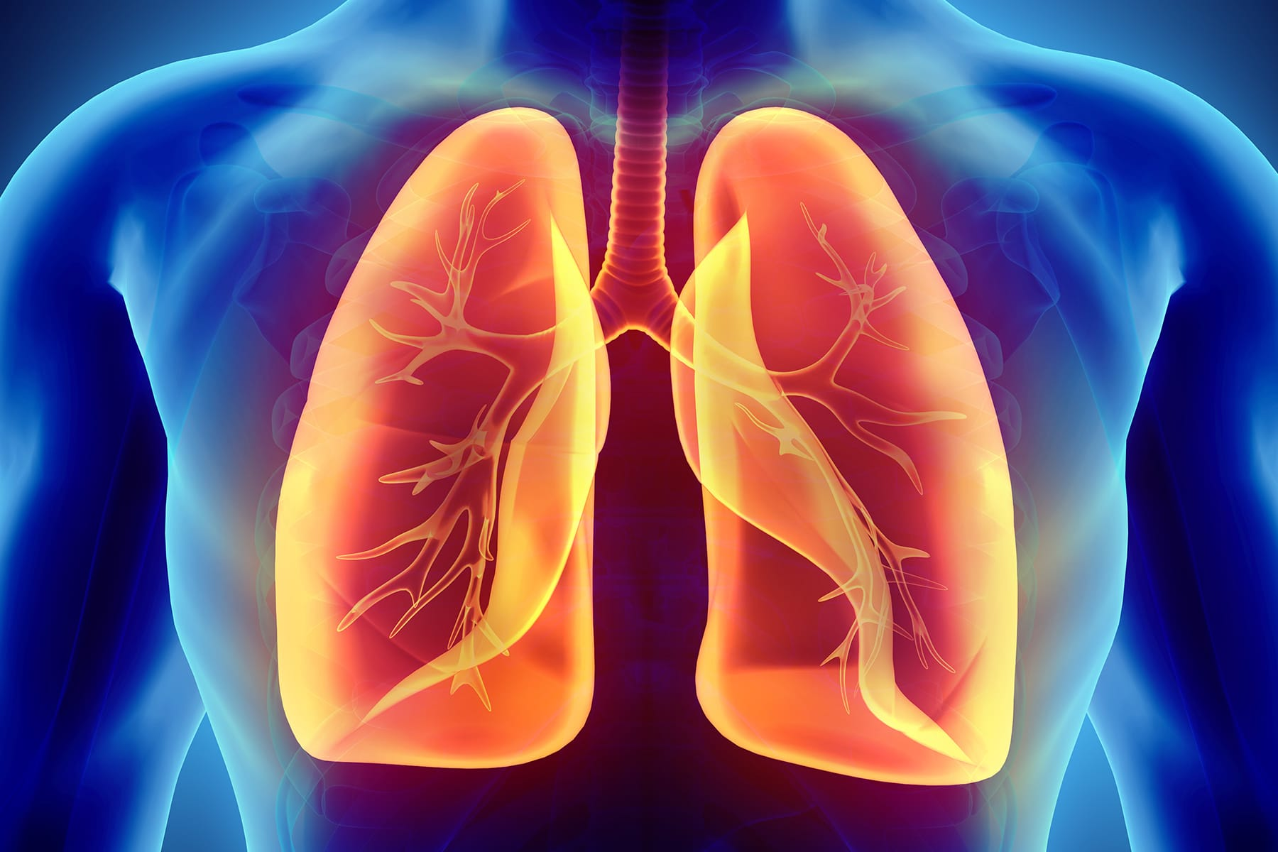 Coronavirus and Your Lungs